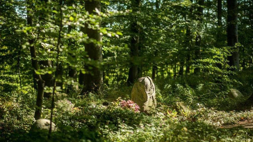 Høsterkøb Kirkegård