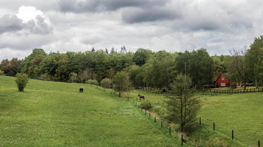 Skovrødgård ved Rude Skov